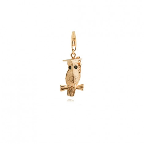 Wise Owl Graduation Charm in Sterling Silver with a Yellow Gold Plate