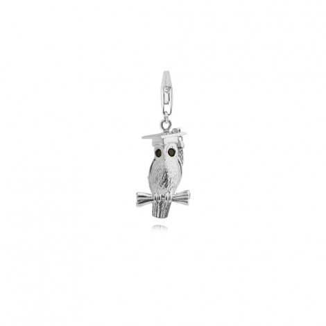 Wise Owl Charm in Sterling Silver